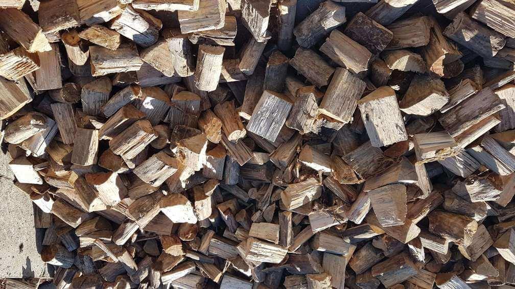 Bluegum Firewood